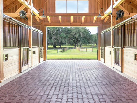 Rescue Barn for horses in Ocala, FL